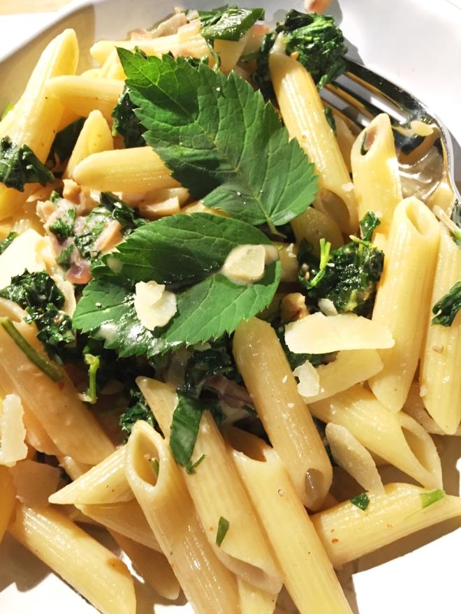 Giersch-Pasta, Rezepte mit Giersch, Giersch-Küche, Maggikraut, Liebstöckel, Kräuterküche, Gartenblog, Rezepte, Gartenrezepte, Past mit Giersch, Gierschrezepte, Giersch-Pasta
