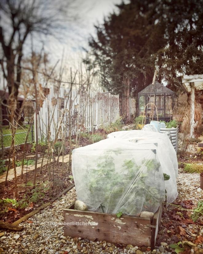 webvlies-winterschutz-beckmann-gestaenge.jpg