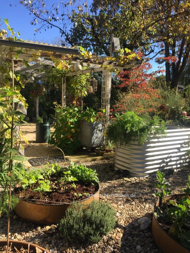 webGarten-Herbst-Laub