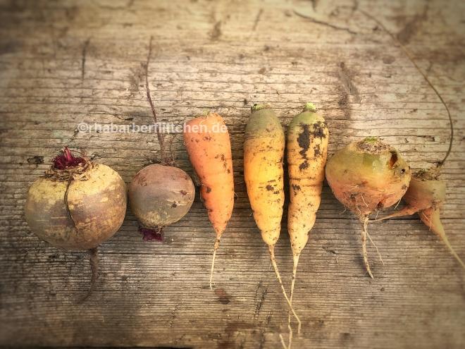 webHerbstsalat-Karotten-Rote-Bete-Kopie